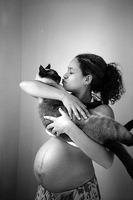 pregnancy_cat_01.jpg